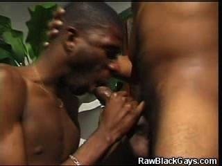 sucking on black pussy
