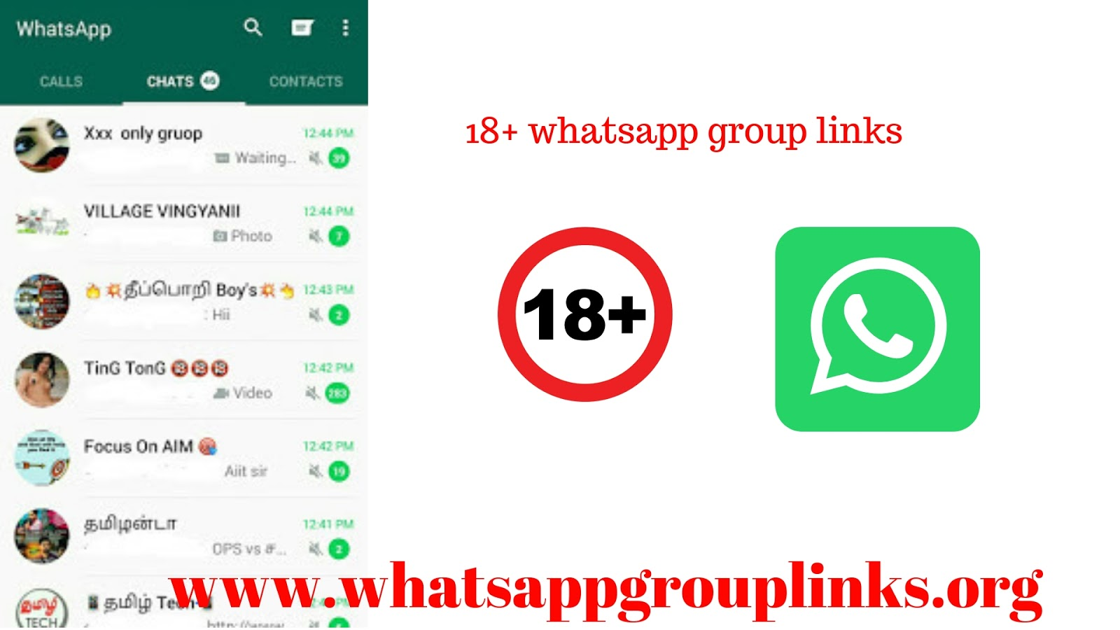 online whatsapp sexo