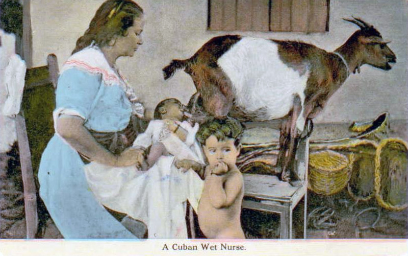 milk wet lactation breast nurse