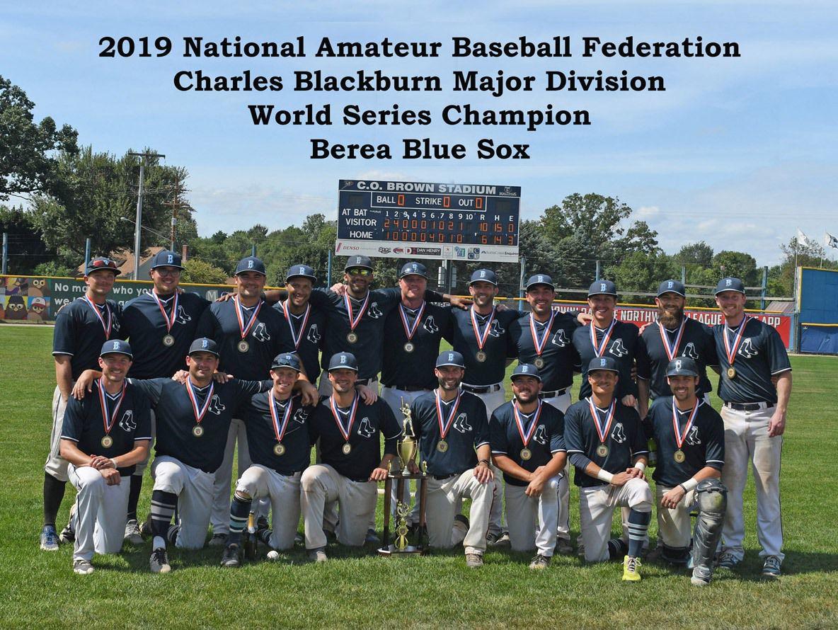 amateur baseball national federation