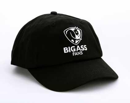 ass bis big