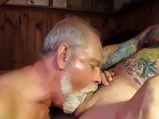 tube daddy bear