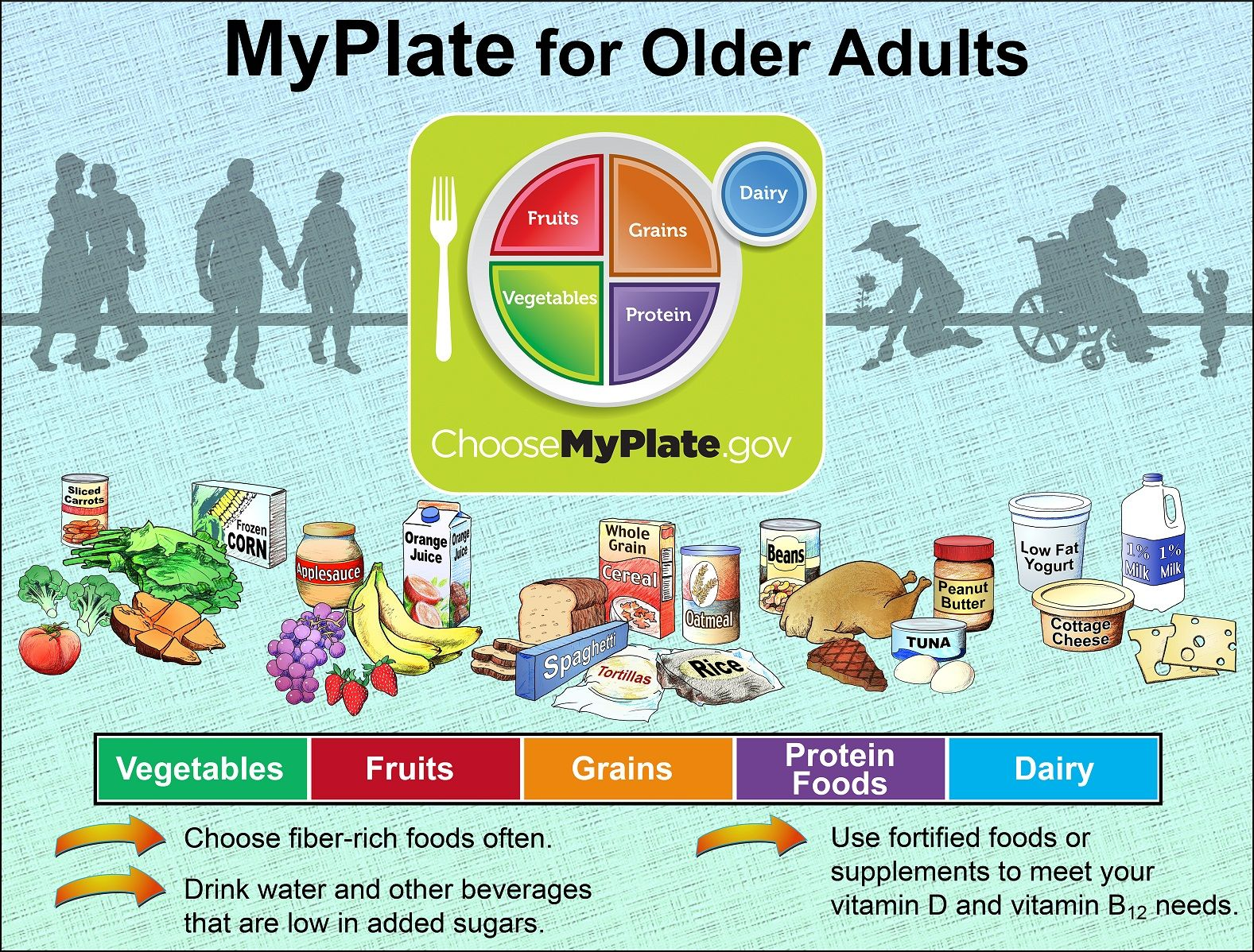 of balanced adult diet an person chart