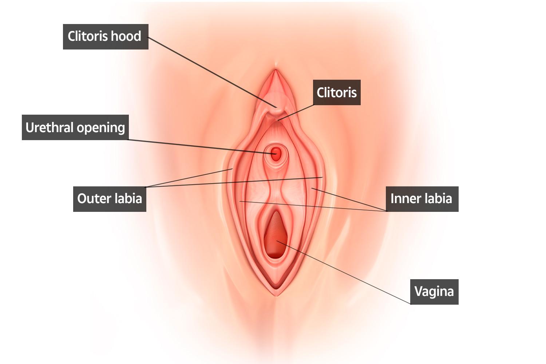 images pee hole